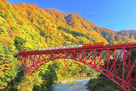 秋の黒部峡谷 トロッコ列車と紅葉の山並みに快晴の空の写真素材 [FYI04729295]