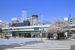 桜咲く日本橋の写真素材 [FYI04729299]