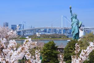 桜咲くお台場の写真素材 [FYI04729301]