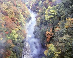 小安峡(おやすきょう)温泉 紅葉の写真素材 [FYI04729308]