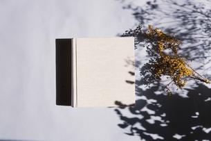 植物の影と生成りの生地のフォトアルバムの写真素材 [FYI04729393]