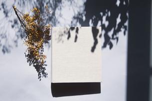 植物の影と生成りの生地のフォトアルバムの写真素材 [FYI04729394]