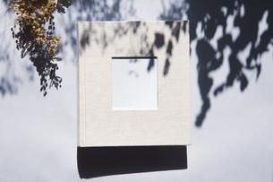 植物の影と生成りの生地のフォトアルバムの写真素材 [FYI04729395]