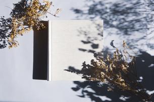 植物の影と生成りの生地のフォトアルバムの写真素材 [FYI04729397]