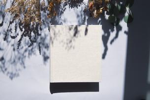 植物の影と生成りの生地のフォトアルバムの写真素材 [FYI04729401]