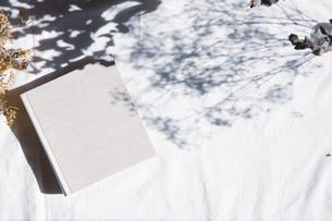 植物の影と生成りの生地のフォトアルバムの写真素材 [FYI04729402]