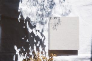 植物の影と生成りの生地のフォトアルバムの写真素材 [FYI04729403]
