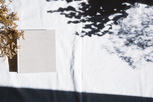 植物の影と生成りの生地のフォトアルバムの写真素材 [FYI04729404]