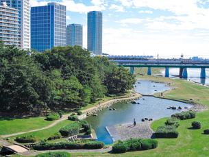 快晴の二子大橋から 多摩川河川敷の兵庫島公園の写真素材 [FYI04729487]