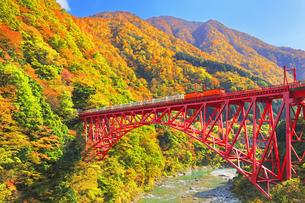 秋の黒部峡谷 トロッコ列車と紅葉の山並みの写真素材 [FYI04729562]