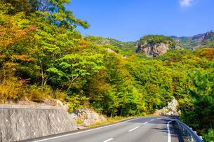 【香川県 小豆島】 車道からみる秋の寒霞渓 紅葉の写真素材 [FYI04729570]