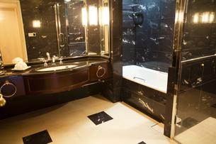 大理石のバスルームの写真素材 [FYI04729673]