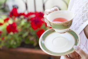 ローズヒップティーを飲む女性の手元の写真素材 [FYI04729746]