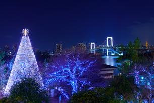 東京 お台場 クリスマスツリーとレインボーブリッジの写真素材 [FYI04730195]