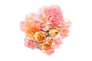 薔薇とカーネーションの花束の写真素材 [FYI04730234]