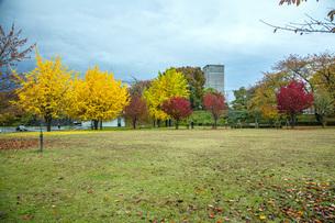 秋色の霞城公園の写真素材 [FYI04730308]