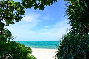 池間島の砂浜とビーチの写真素材 [FYI04730357]