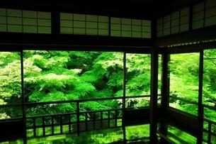 瑠璃光院 京都の写真素材 [FYI04730507]