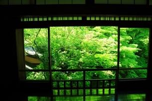 瑠璃光院 京都の写真素材 [FYI04730509]