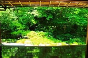 瑠璃光院 京都の写真素材 [FYI04730511]