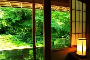 瑠璃光院 京都の写真素材 [FYI04730512]
