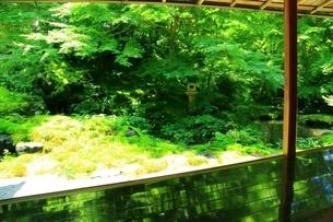 瑠璃光院 京都の写真素材 [FYI04730516]