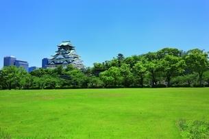 大阪城西ノ丸庭園の写真素材 [FYI04730567]