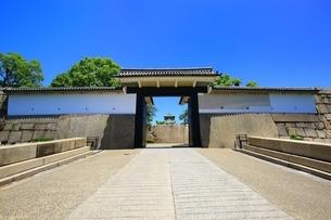 大阪城公園 桜門と天守閣の写真素材 [FYI04730582]