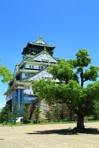 大阪城公園 本丸広場と天守閣の写真素材 [FYI04730629]