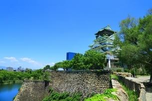 大阪城公園 内堀と天守閣の写真素材 [FYI04730636]