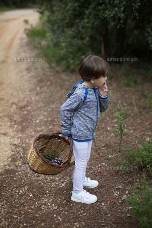 ハーフの男の子が松ぼっくりなどが入ったカゴを持って、森林の中に佇む。の写真素材 [FYI04730838]