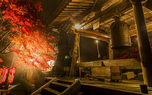 ライトアップされる紅葉と大山寺の鐘楼と宝篋印塔の写真素材 [FYI04730909]