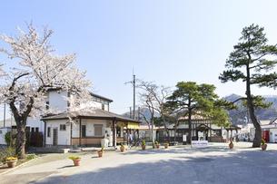 2020年桜シーズンの長瀞駅の写真素材 [FYI04730982]