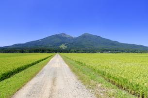 福島県 猪苗代より磐梯山を望むの写真素材 [FYI04731072]
