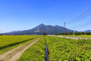 福島県 猪苗代より磐梯山を望むの写真素材 [FYI04731076]