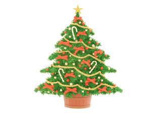赤いリボンのクリスマスツリーの写真素材 [FYI04731318]