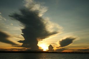 アマゾンの落日と入道雲 ブラジルの写真素材 [FYI04731459]