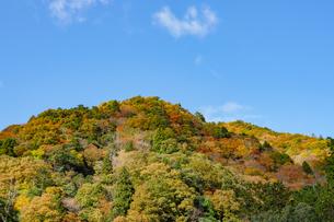 晴天の空と紅葉する山の写真素材 [FYI04731462]