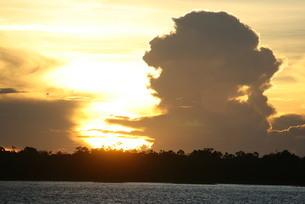 アマゾンの落日と入道雲 ブラジルの写真素材 [FYI04731463]