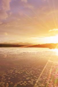 舌喰池と朝日の光芒と浅間山遠望,ハイキーの写真素材 [FYI04731663]