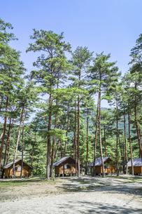木立の中に建ち並ぶバンガローの写真素材 [FYI04731886]