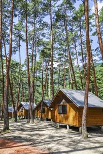 木立の中に建ち並ぶバンガローの写真素材 [FYI04731887]