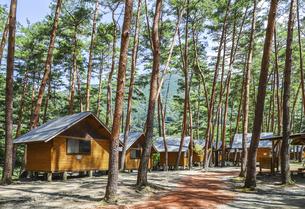 木立の中に建ち並ぶバンガローの写真素材 [FYI04731888]