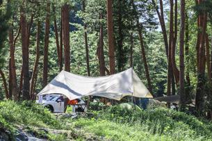 渓谷の木立の中に張られたキャンプテントの写真素材 [FYI04731893]