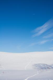 雪の丘の野生動物の足跡と青空の写真素材 [FYI04731961]