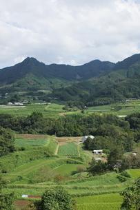 高千穂の風景 農村の写真素材 [FYI04732051]