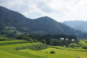 高千穂の風景 農村の写真素材 [FYI04732052]