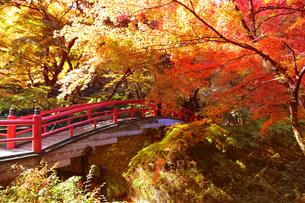 伊香保温泉(河鹿橋)の写真素材 [FYI04732086]