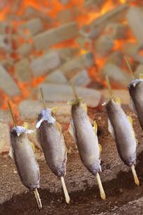 炭火で焼くあゆの塩焼きの写真素材 [FYI04732088]