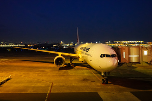 早朝の羽田空港 夜明け前 (第一ターミナル)の写真素材 [FYI04732137]
